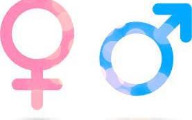 "North Carolina School District Plans to Deceive Parents About ""Gender"" Changes"