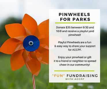 Pinwheels for Parks_Web Graphic.png