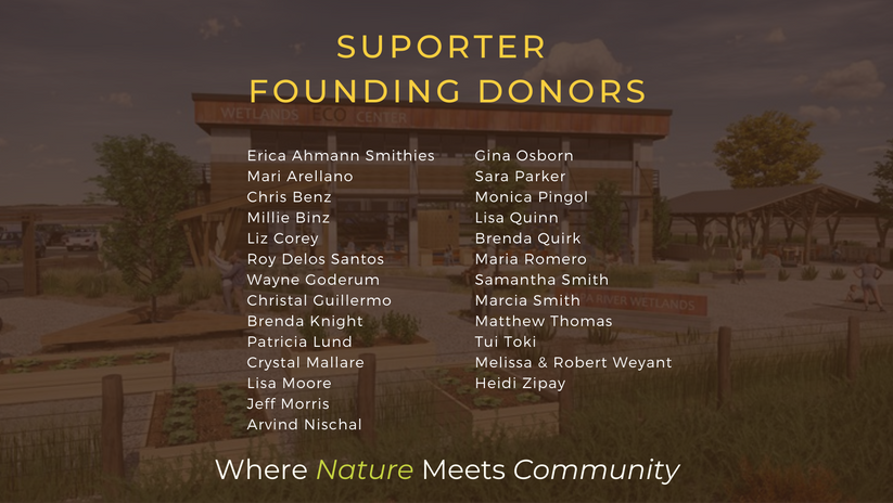 Eco Center Donor Levles.png