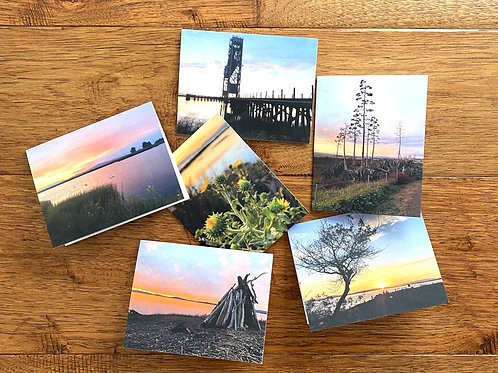 Wetlands Edge Spectacular Sunsets note cards
