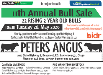 2020 Peters Angus Bull Sale - check out online catalogue