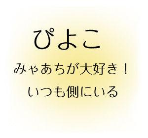 1_ぴよこ説明.jpg