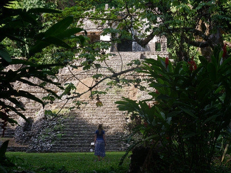 Discovering Mayas