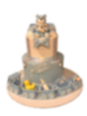 baby shower cake.png