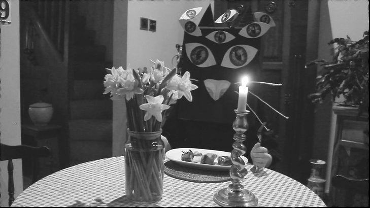 Cat Film Still