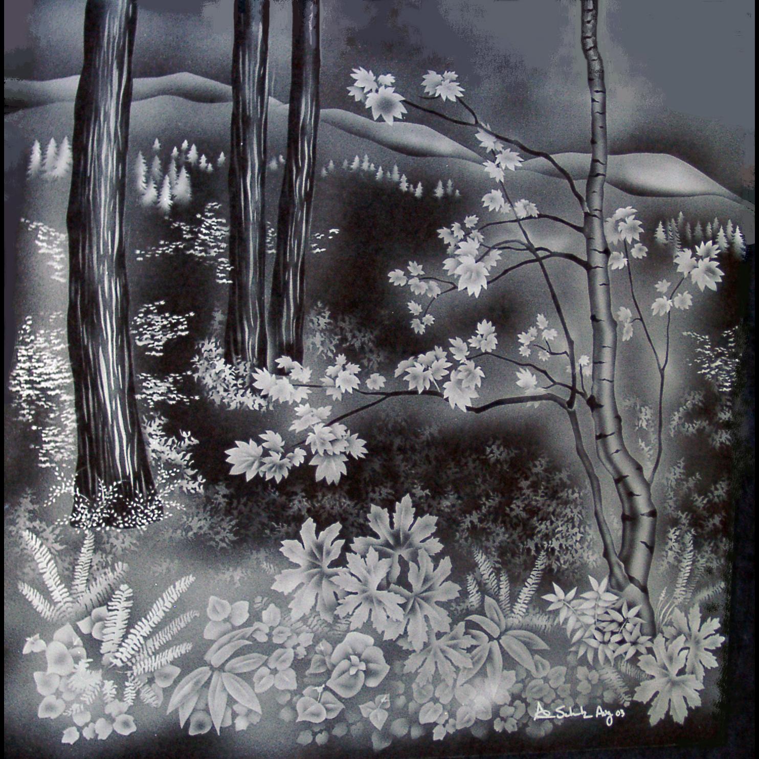 Undergrowth Forest Scene