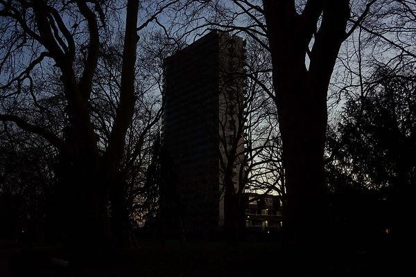 20210109-SouthwarkTrees.jpg
