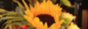 reviews+sunflower.jpg