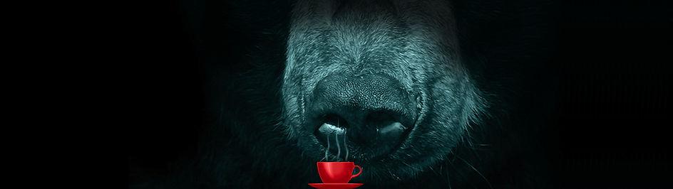 bigbear_top.jpg