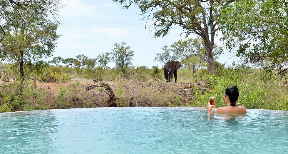 Hoyo Hoyo Safari Lodge - Pool.JPG