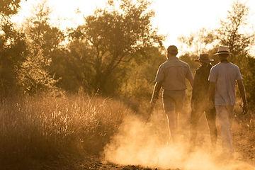 Singita-Lebombo-Lodge-Bush-walk-2.jpg