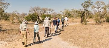 Arathusa-Safari-Lodge-highres-6.jpg
