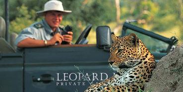lhills_leopard_2.jpg