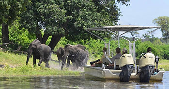 botswana-river-cuise-chobe-princess.jpg