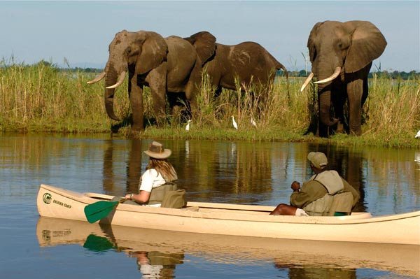 lower zambezi.jpg