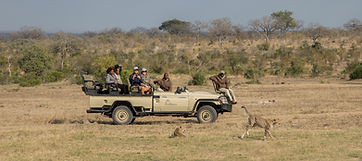Arathusa-Safari-Lodge-highres-45.jpg