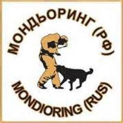 Mondioring ( Мондьоринг ) - очень интересный и увлекательный вид кинологического спорта.