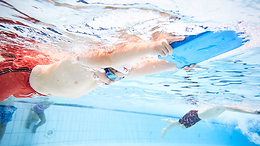Important News Regarding Learn To Swim Membership Renewals