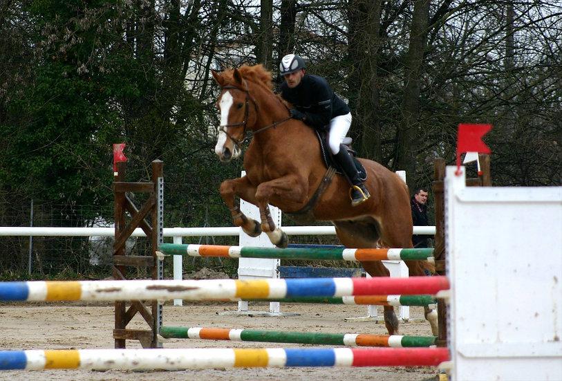 26/ Centre Equestre de Grignan