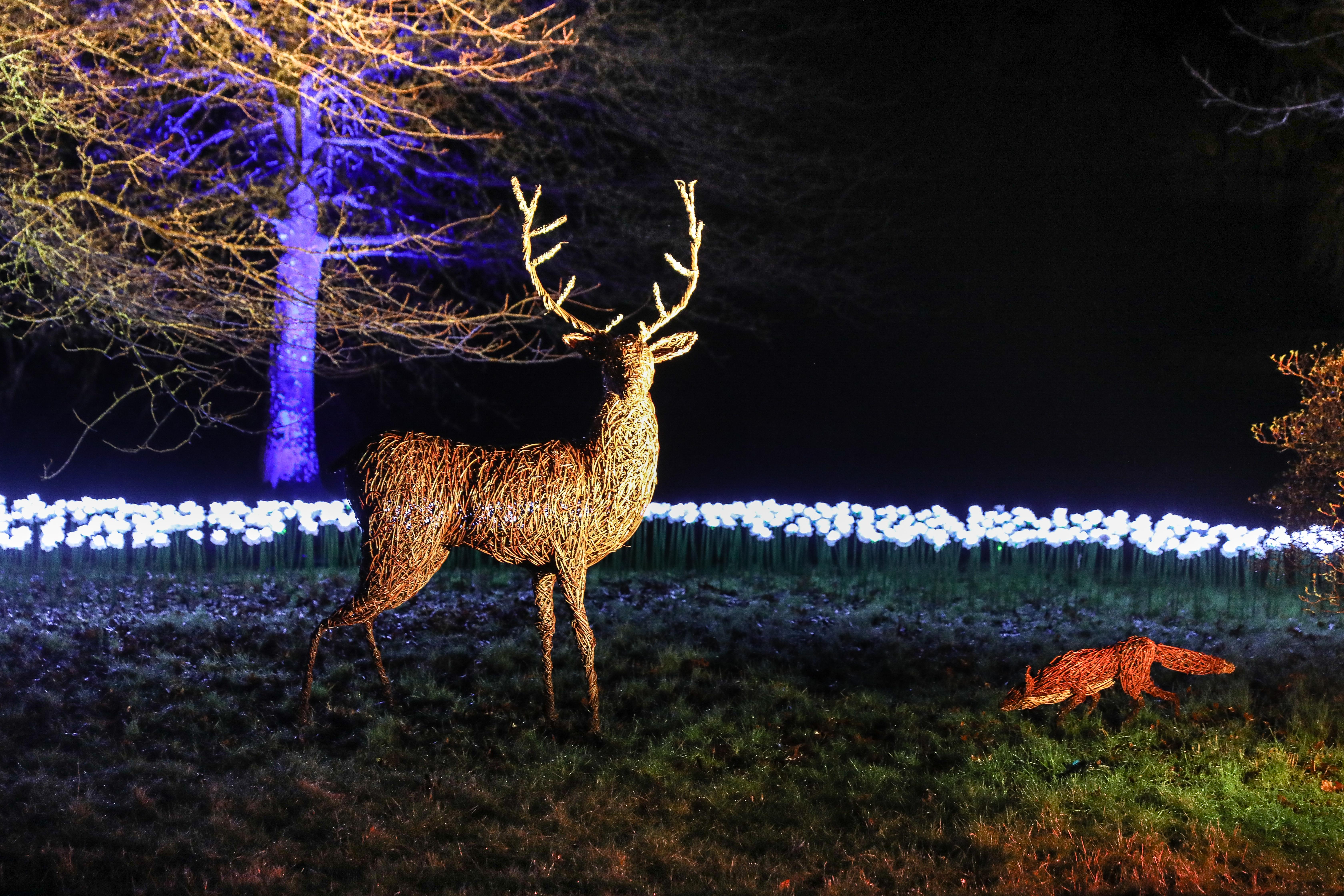 Christmas @ Stourhead