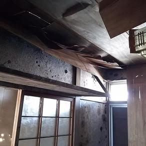 台風21号 大阪支援活動 2/23~24