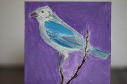 Bird - in blue and white color