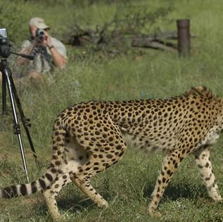 Dottie ignores photographers