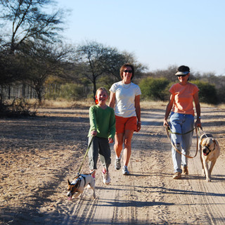 Morning walk, Muscles, Pippa, Lori, Jane and Sharp