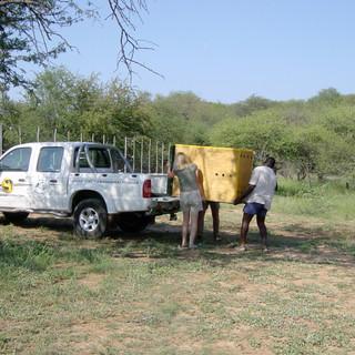 Dottie's arrival at Makulu Makete