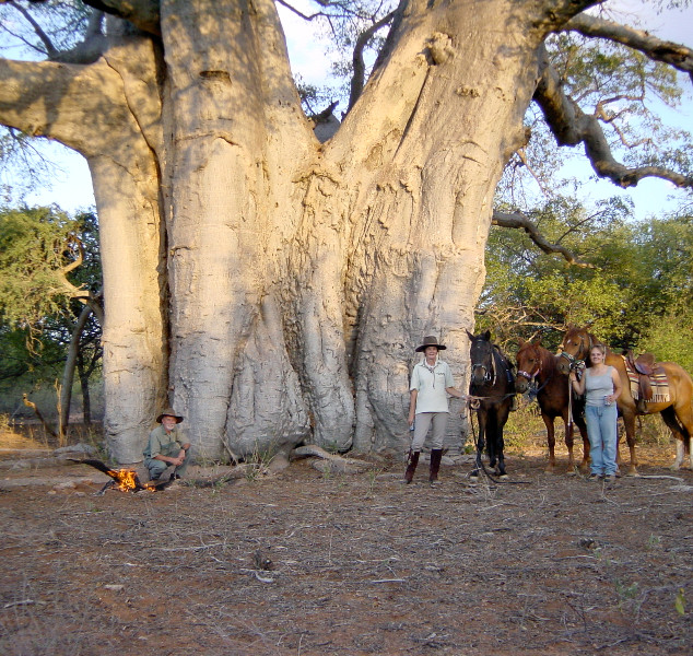The Big Baobab with Peter, Jane and Engela, Mukwa, Red and Jack