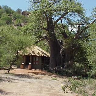 Honeymoon Cottage, Madia Pala Camp