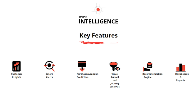 Mapp-intelligence-Key features.png