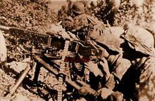 MG 37 (t) 320510876993.jpg