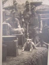 bunker life, trenches--tumblr_ney5j8JB6v
