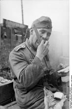 Bundesarchiv_Bild_101I-081-3285-20,_Russ