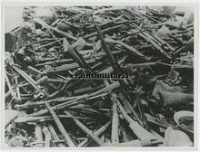 Captured Belgian Arms.jpg