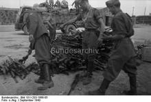 Captured Italian arms.jpg