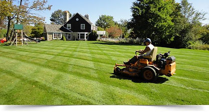 lawn-mow1.jpg