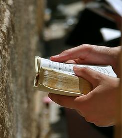 סיורים מודרכים בירושלים | דרך ארץ