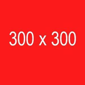300x300PX.jpg