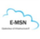 logo E-msn.png