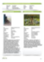 Nestplanning Anouk 2020 .jpg