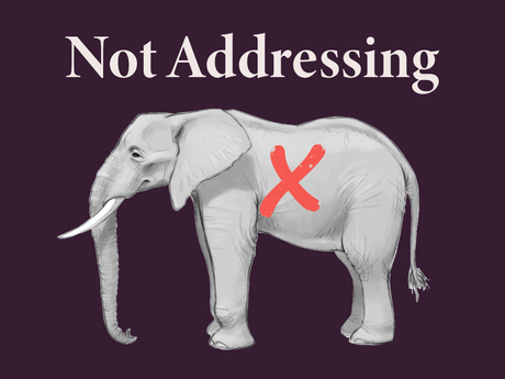 Not Addressing The Elephant In The Room