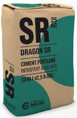 dragon sr-min.JPG