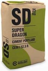 super dragon-min.JPG