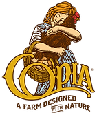 copia front large.png