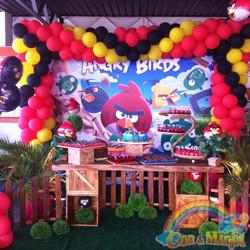 ANGRY BIRDS (7).JPG