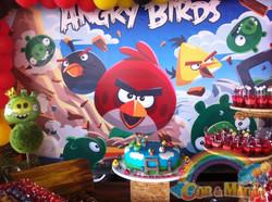ANGRY BIRDS (12).JPG