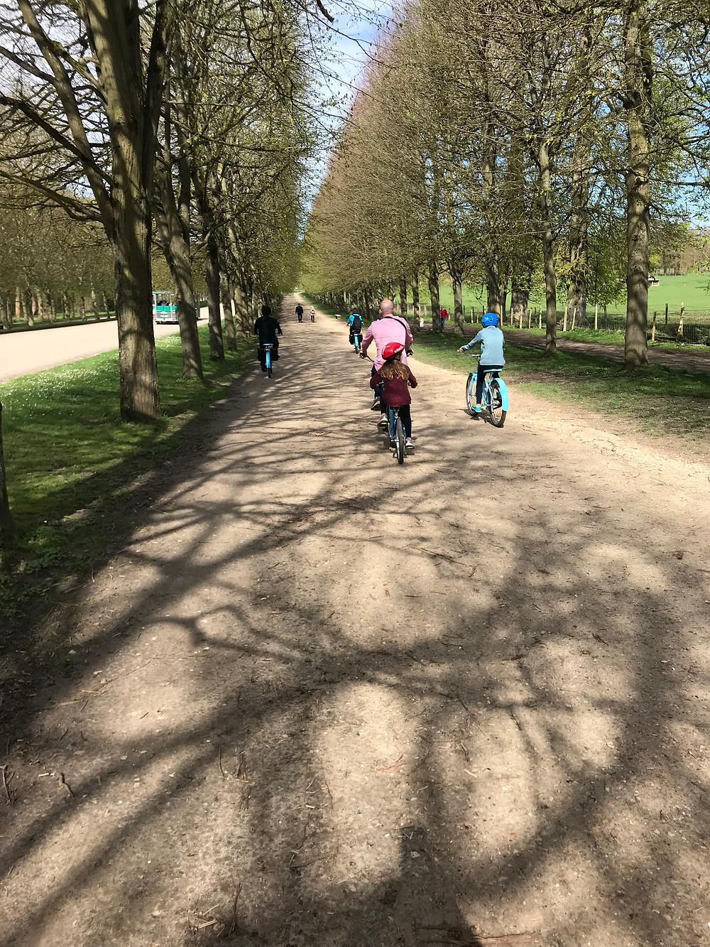Biking the grounds of Versailles