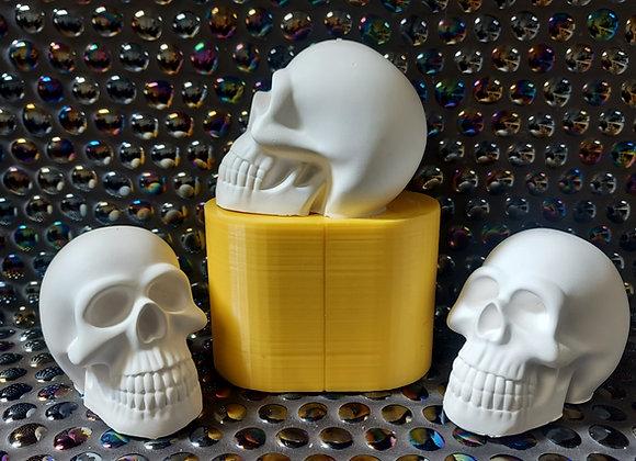 Large skull mould